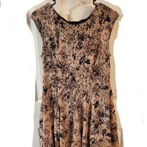 danny and nicoles Lace Floral fit & Flare Dress